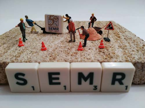 SEMR y los MiniToys 3